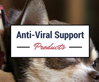 Anti-Viral Support