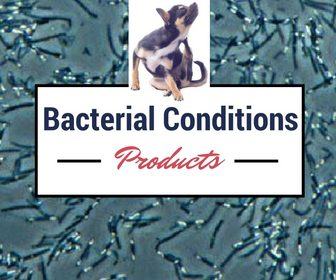Bacterial Conditions