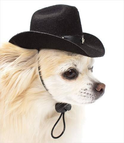 Cowboy Hats for Dogs-Various Colors-$19.99