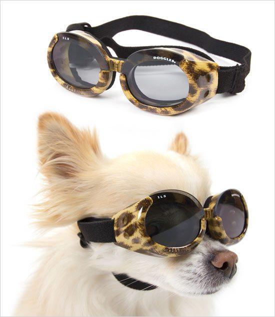 Leopard Doggles ILS Sunglasses-$21.99