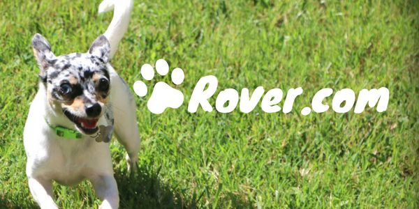 5 STAR LOCAL PET CARE       -      ROVER THE DOG PEOPLE LearnMore >