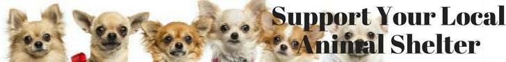 support-your-local-animal-shelter-banner