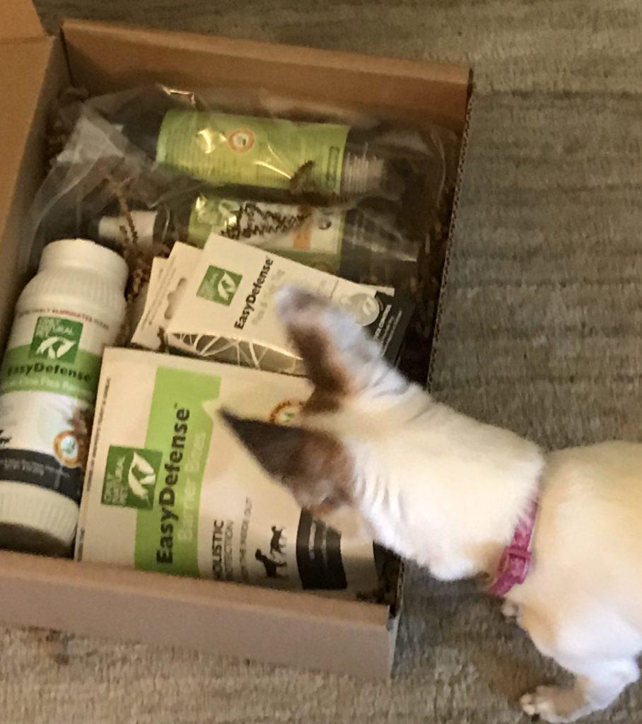 Best Natural Puppy Training Treats