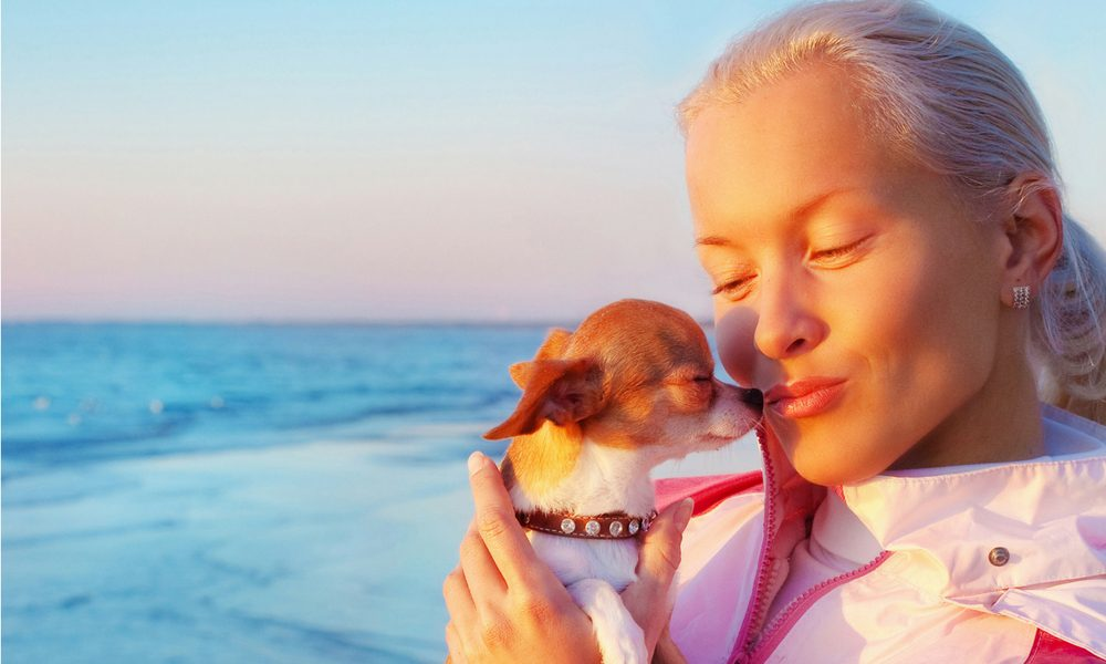 an attractive older woman kissing her chihuahua with ocean in background