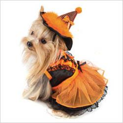Costumes_Witches-2