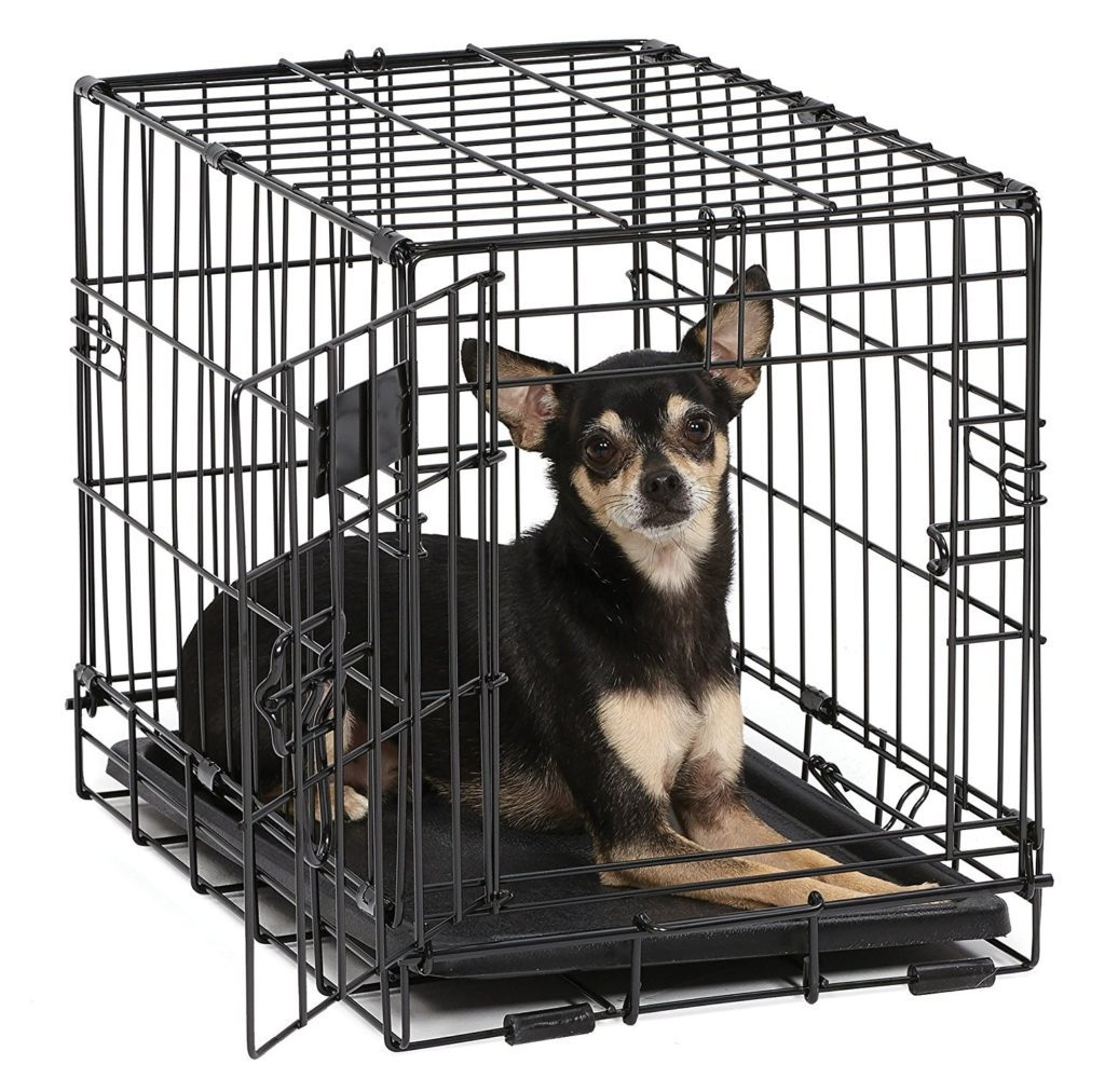a black and tan short haired Chihuahua lying in a wire crate with white background