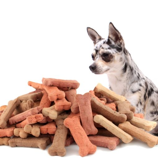 top rated treats for small dogs