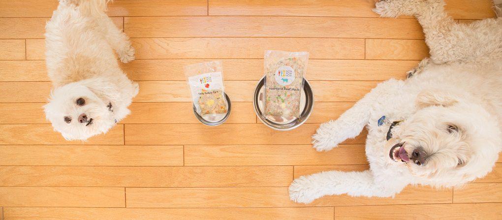 Veterinary Nutritionist Homemade Dog Food