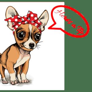 dog bed tip, buying a dog bed, dog tips